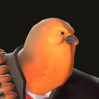 Pootis bird